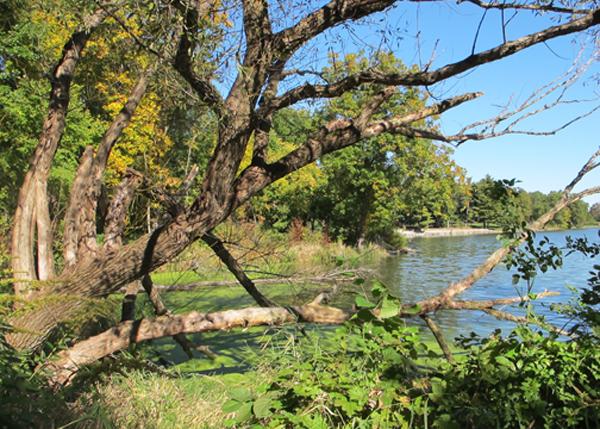 Herrick Lake Forest Preserve