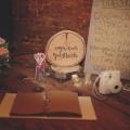 8-TIF-ThisIsFeeling-Mike-Talladen-JamiAaron-Haight-Chicago-Wedding-Photography