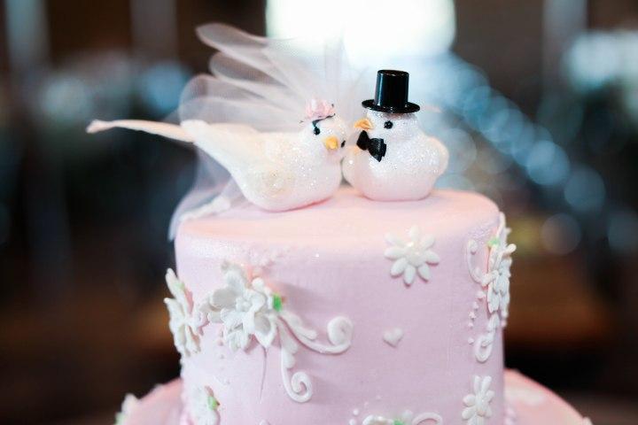 4-Gibb-Wedding-Reception-49